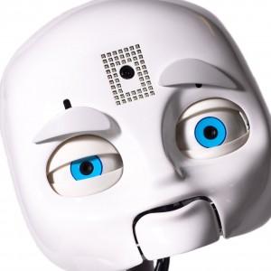 mds-head-whiteback-9236_square